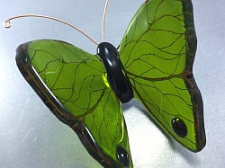 Fused Glass Butterfly