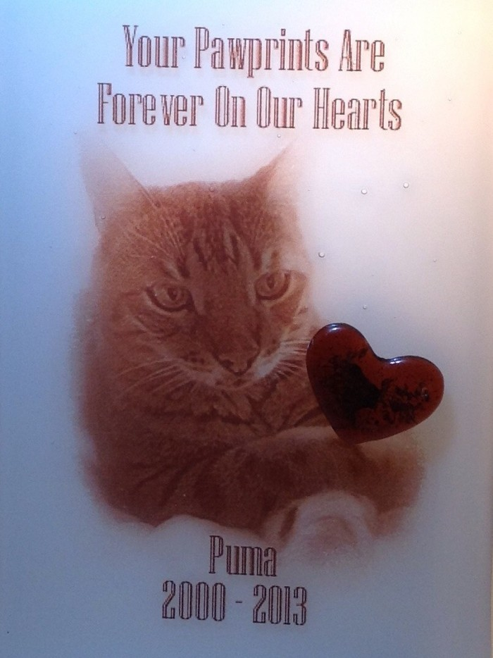 Pet Memorial Plaque with Heart